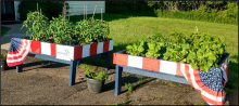 community gardens 3